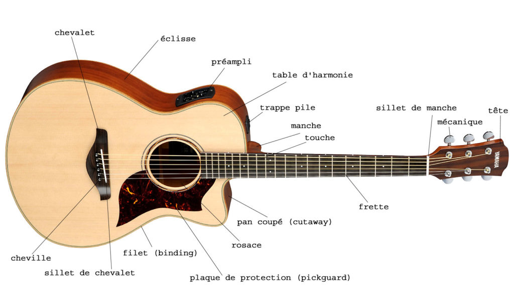 anatomie de la guitare acoustique folk